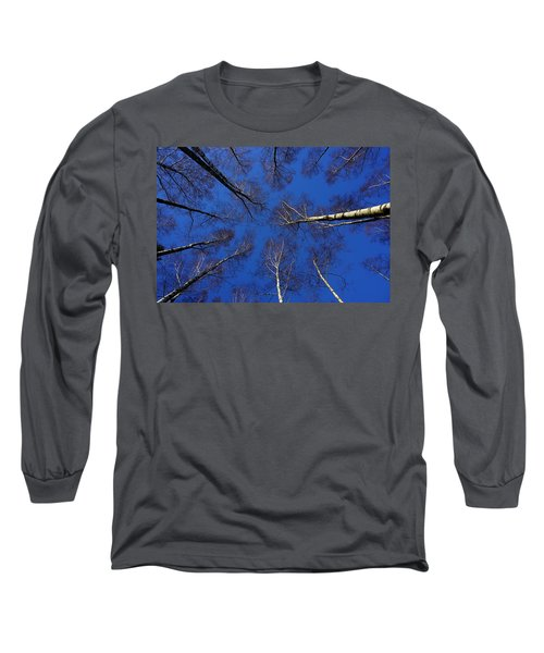 Birch Trees In Winter Long Sleeve T-Shirt