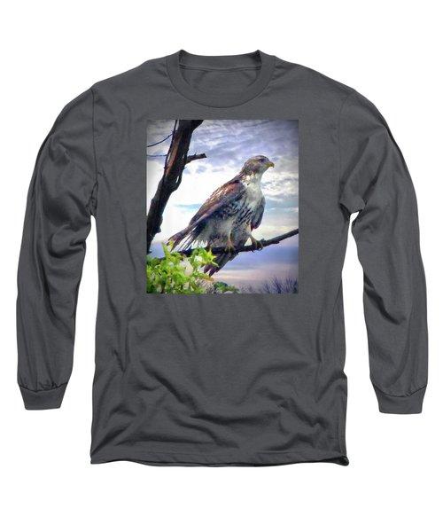 Bird Of Prey Long Sleeve T-Shirt by Cedric Hampton