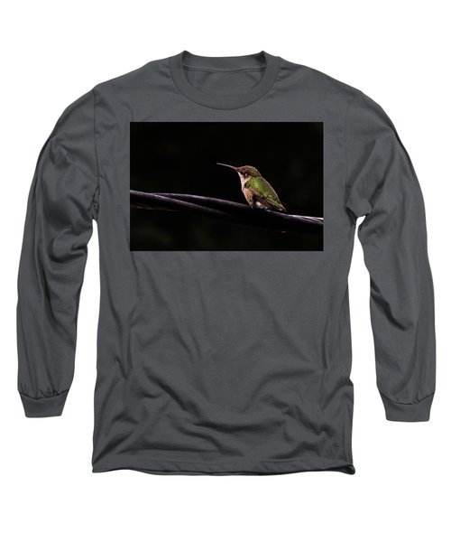 Bird On A Wire Long Sleeve T-Shirt