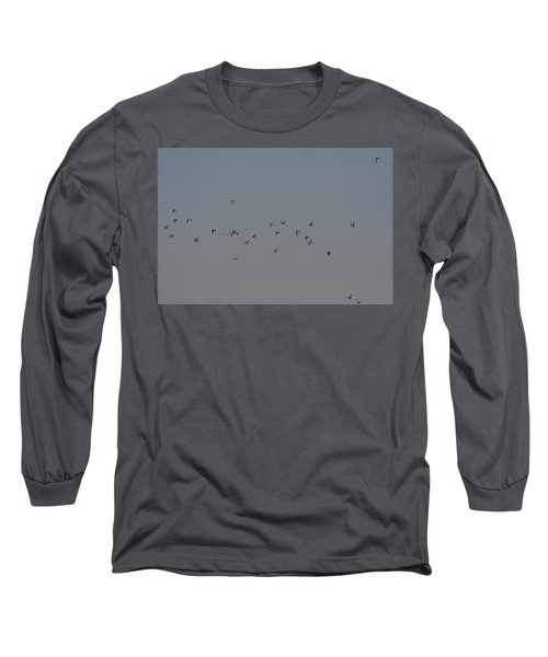 Birds And Airplane Long Sleeve T-Shirt
