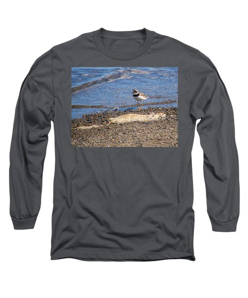 Birds Of Maine Long Sleeve T-Shirt by Trace Kittrell