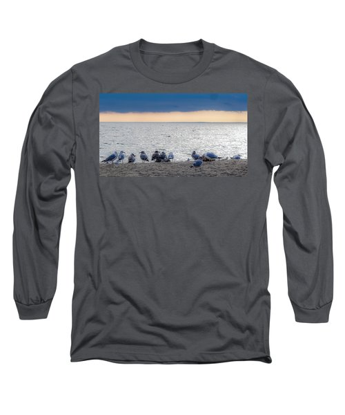 Birds On A Beach Long Sleeve T-Shirt