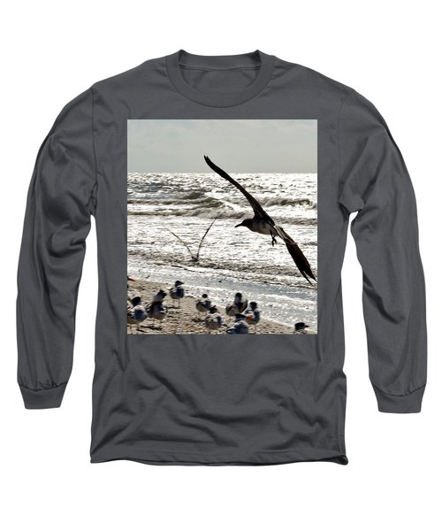 Birds World Long Sleeve T-Shirt