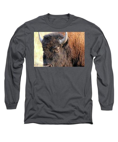 Bison Head Study Long Sleeve T-Shirt