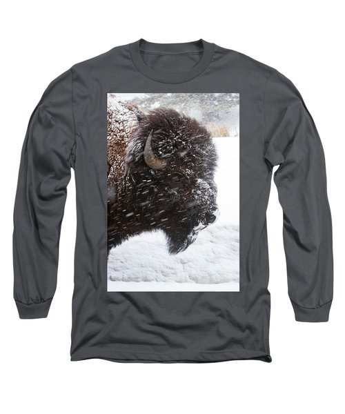 Bison In Snow Long Sleeve T-Shirt