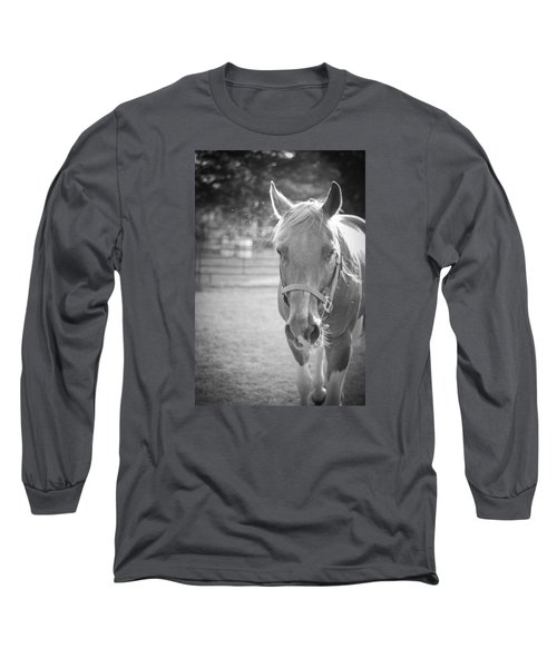 Long Sleeve T-Shirt featuring the photograph Black And White Portrait Of A Horse In The Sun by Kelly Hazel