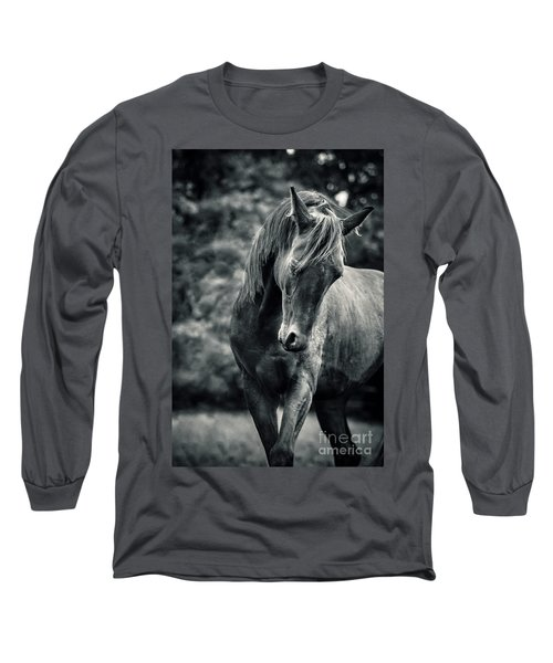 Black And White Portrait Of Horse Long Sleeve T-Shirt