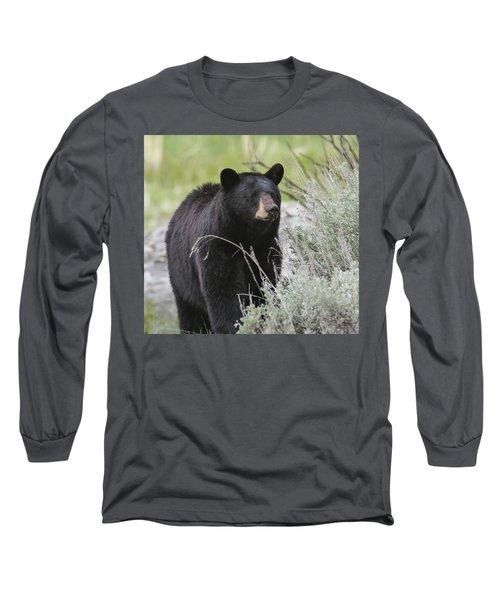 Black Bear Sow Long Sleeve T-Shirt