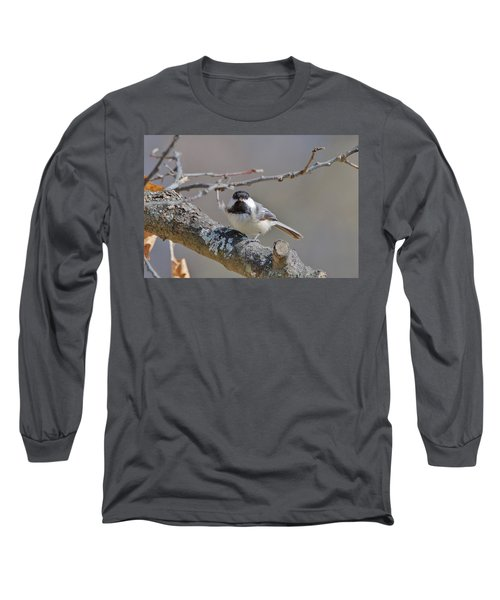 Long Sleeve T-Shirt featuring the photograph Black Capped Chickadee 1109 by Michael Peychich