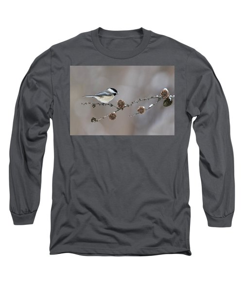 Long Sleeve T-Shirt featuring the photograph Black-capped Chickadee by Mircea Costina Photography
