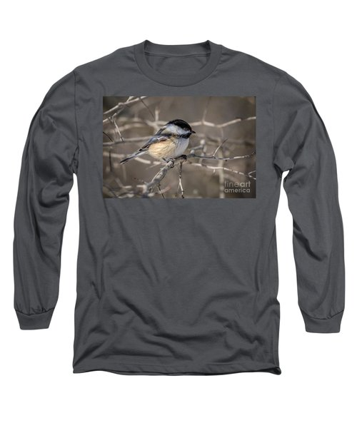 Black-capped Chickadee Iv Long Sleeve T-Shirt
