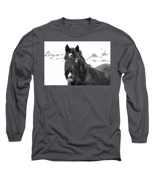 Black Horse Staring In The Snow Black And White Long Sleeve T-Shirt
