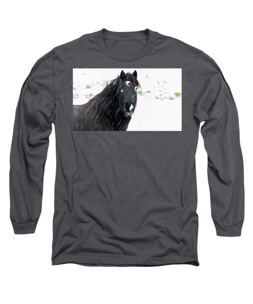 Black Horse Staring In The Snow Long Sleeve T-Shirt