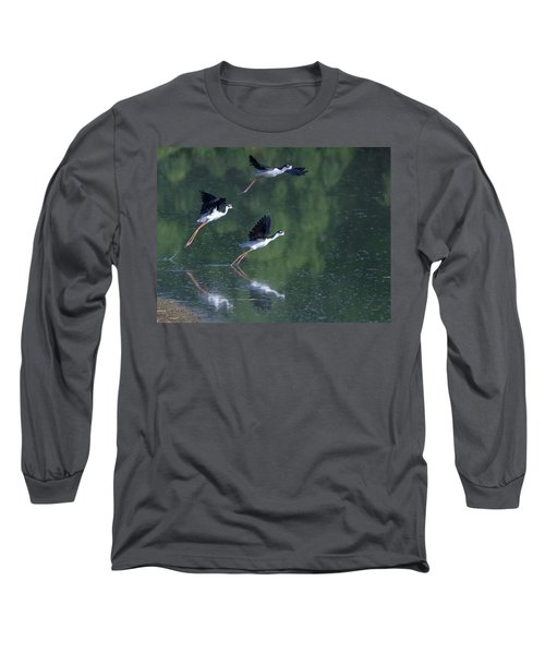 Black-necked Stilts 4302-080917-2cr Long Sleeve T-Shirt
