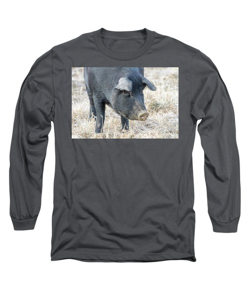 Long Sleeve T-Shirt featuring the photograph Black Pig Close-up by James BO Insogna
