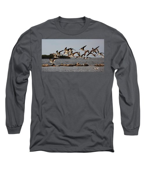 Black Skimmers In Flight Long Sleeve T-Shirt
