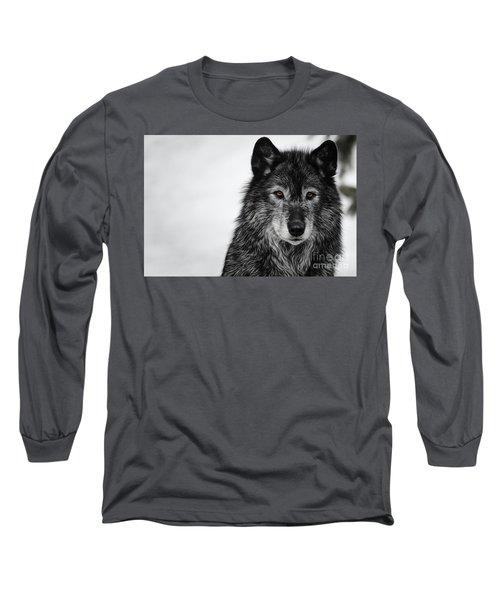 Black Wolf I Long Sleeve T-Shirt by Brad Allen Fine Art