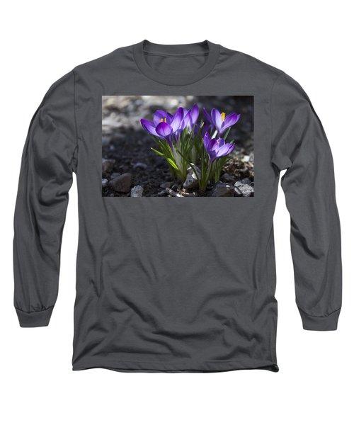 Blooming Crocus #2 Long Sleeve T-Shirt