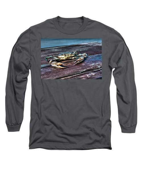 Blue Crab - Above View Long Sleeve T-Shirt