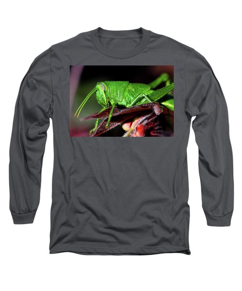 Blue Eyed Green Grasshopper 001 Long Sleeve T-Shirt