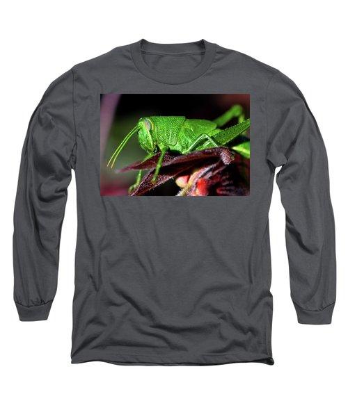 Blue Eyed Green Grasshopper 001 Long Sleeve T-Shirt