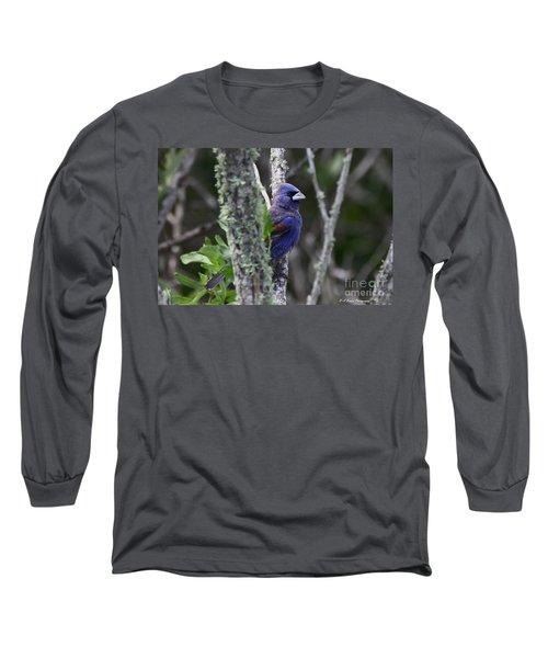 Blue Grosbeak In A Mangrove Long Sleeve T-Shirt