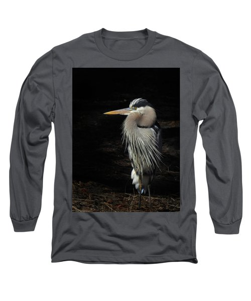 Blue Heron Gaze Long Sleeve T-Shirt by Deborah Smith
