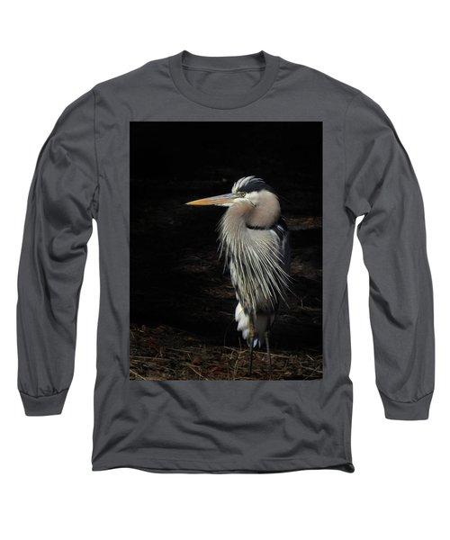 Blue Heron Gaze Long Sleeve T-Shirt