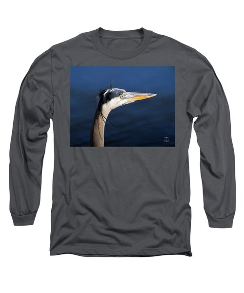 Blue Reflection Long Sleeve T-Shirt