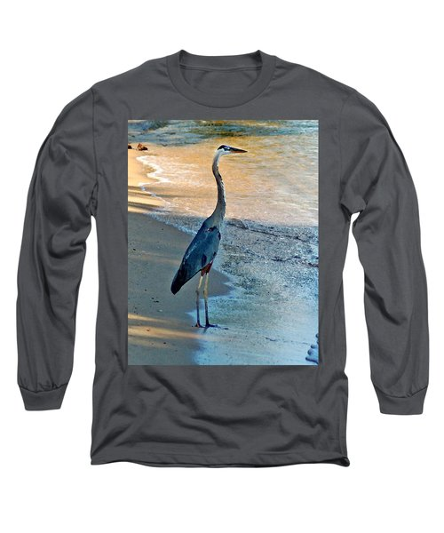 Blue Heron On The Beach Close Up Long Sleeve T-Shirt