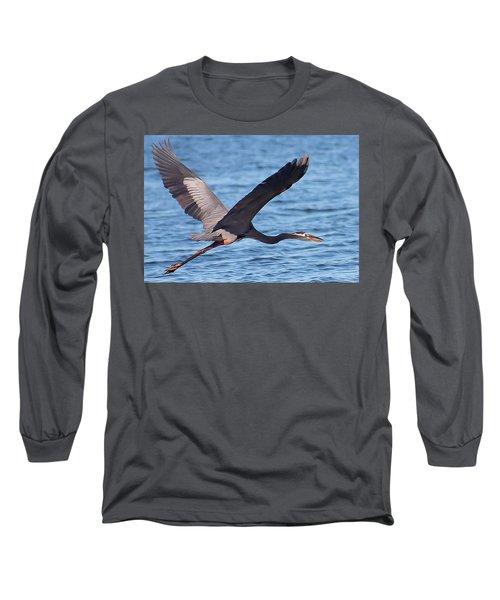 Blue Heron Wingspan Long Sleeve T-Shirt