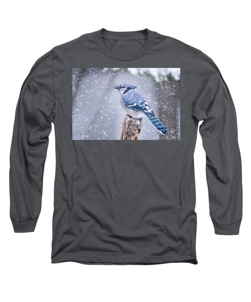 Blue Jay In Snow Storm Long Sleeve T-Shirt
