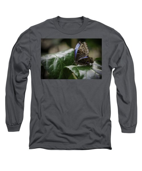 Blue Morpho On A Leaf Long Sleeve T-Shirt