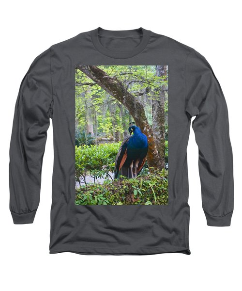 Blue Peacock  Long Sleeve T-Shirt by Joan Reese