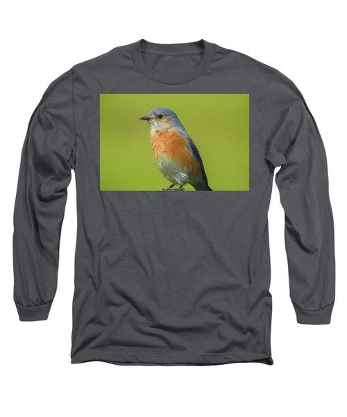 Bluebird Digital Art Long Sleeve T-Shirt