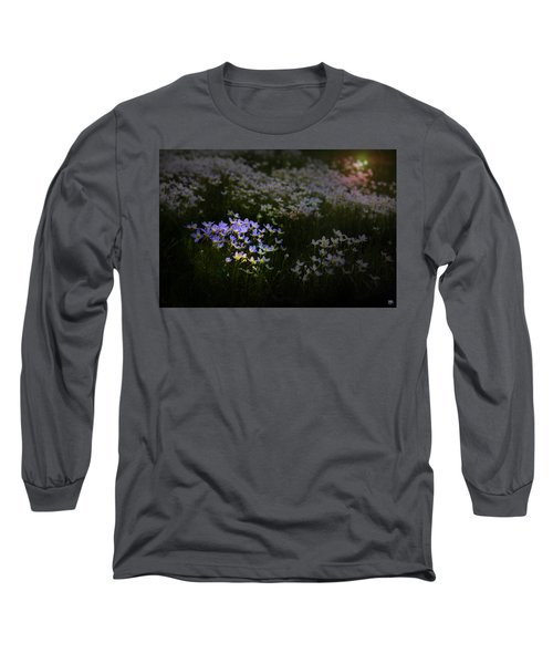 Bluets In Momentary Light Long Sleeve T-Shirt