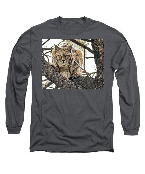 Bobcat In Winter Long Sleeve T-Shirt