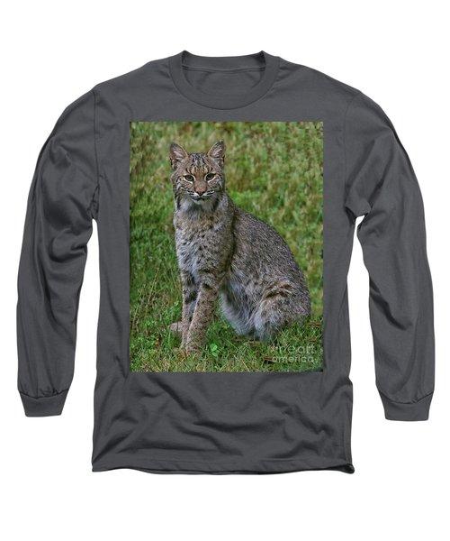 Bobcat On Alert Long Sleeve T-Shirt by Myrna Bradshaw