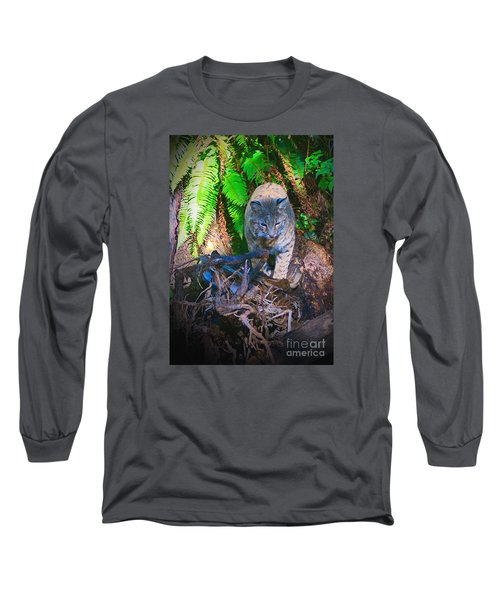 Bobcat On The Hunt Long Sleeve T-Shirt by Ansel Price