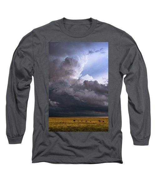 Bovine Tower Long Sleeve T-Shirt