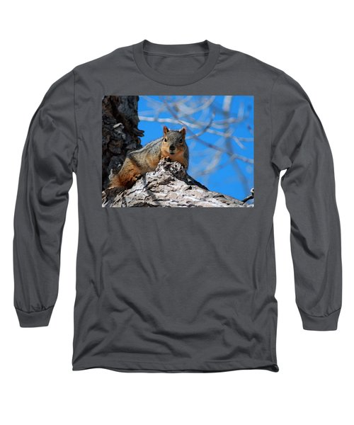 Branch Squirrel Long Sleeve T-Shirt