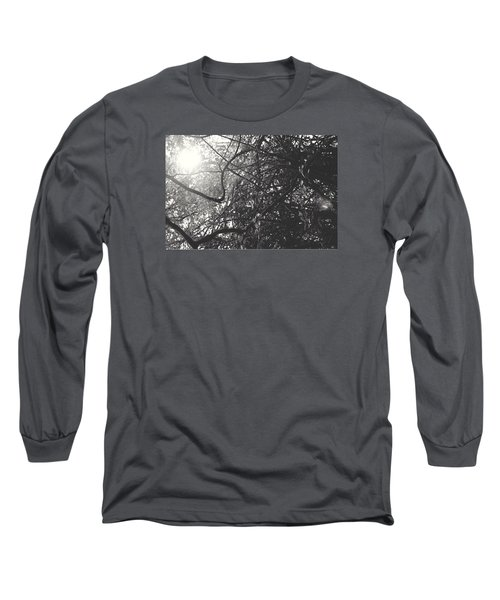 Branches Long Sleeve T-Shirt by Sarah Boyd
