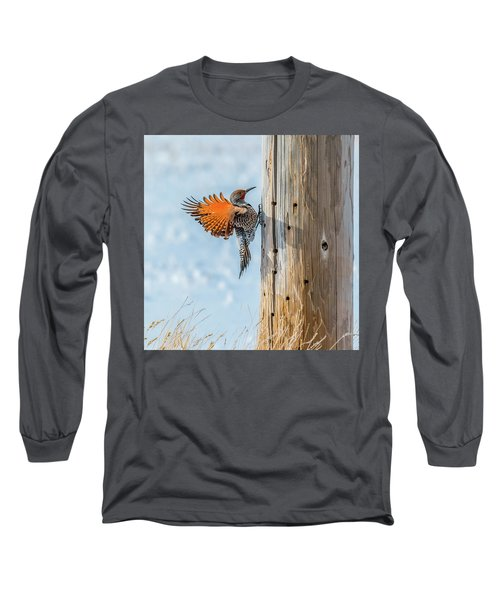 Brilliant Northern Flicker Woodpecker Long Sleeve T-Shirt