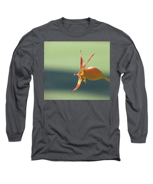 Brilliant Seed Pod Long Sleeve T-Shirt