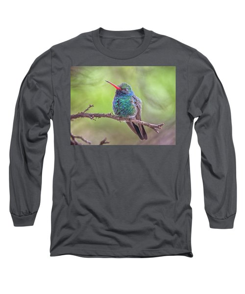 Broad-billed Hummingbird 3652 Long Sleeve T-Shirt