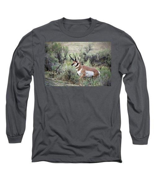 Pronghorn Buck Long Sleeve T-Shirt