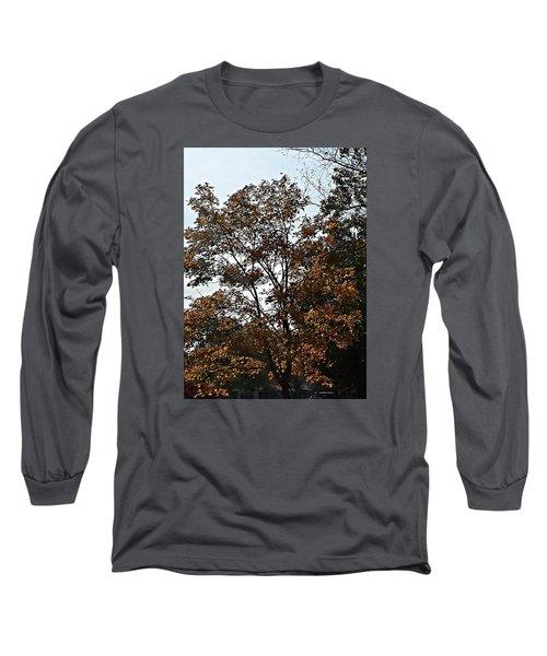 Brown Long Sleeve T-Shirt by Jana E Provenzano
