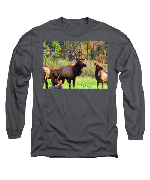 Buffalo River Elk Long Sleeve T-Shirt