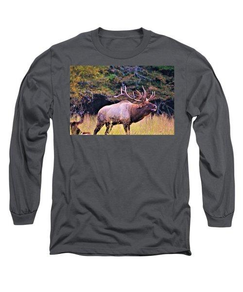 Bull Calling His Herd Long Sleeve T-Shirt
