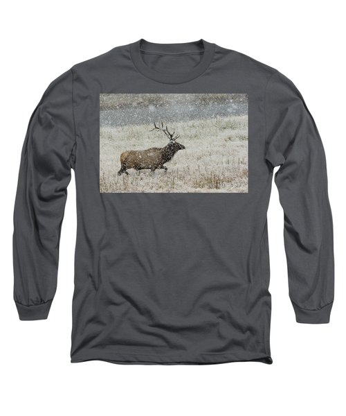 Bull Elk With Snow Long Sleeve T-Shirt
